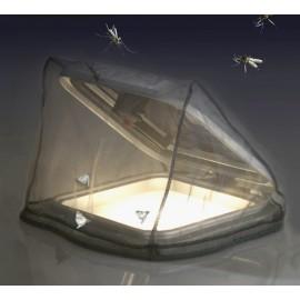 Mosquito-Net